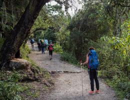 camino inca clasico a machu picchu qori inka travel agency peru