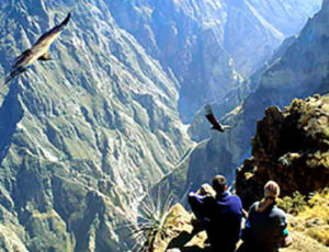 valle del colca arequipa inca travel agency peru