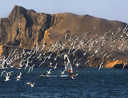 reserva nacional paracas qori inka travel